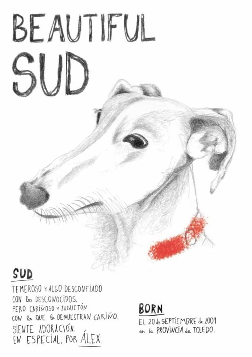 Ilustración y diseño de póster -1