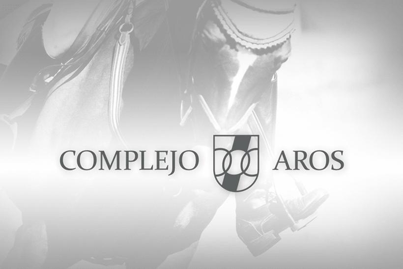 Complejo Aros, propuesta 1