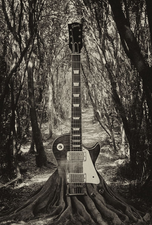 Music of Nature 0