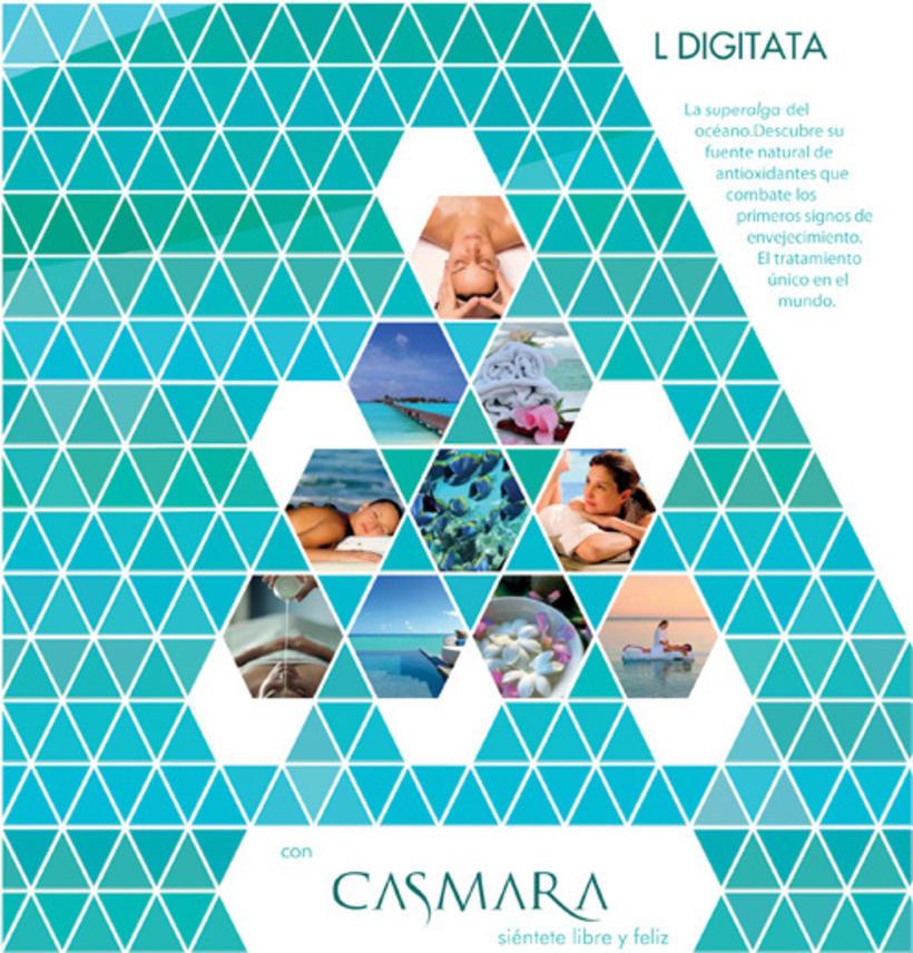Casmara Ocean  -1