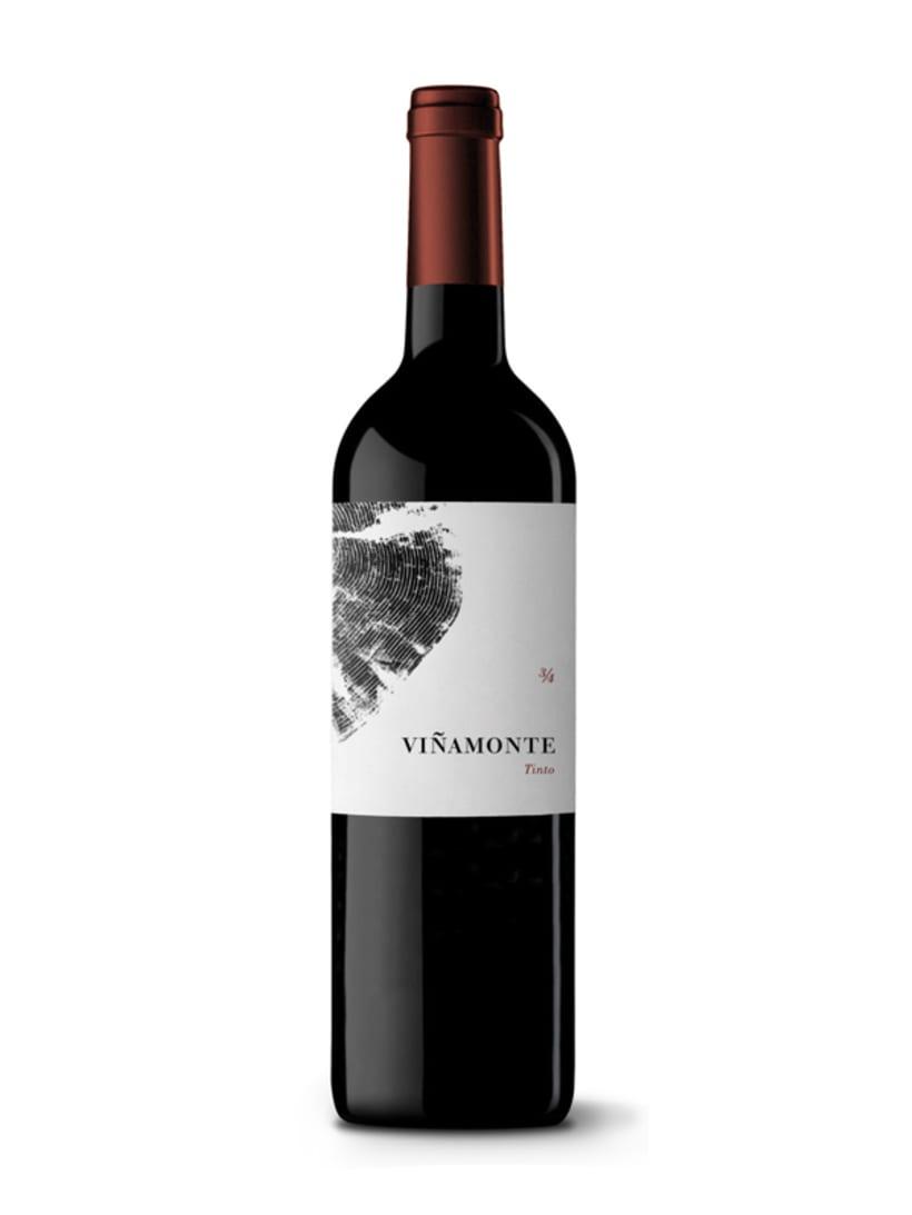 Bodegas Viñamonte 6
