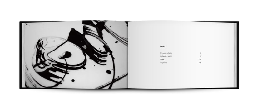 Calligraffiti | Niels Shoe Meulman 5