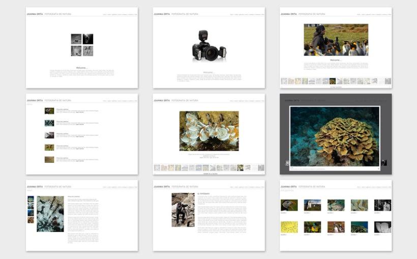 DISEÑO WEB 2011/13 9