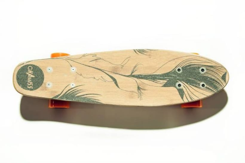 Chamiss longboard 4
