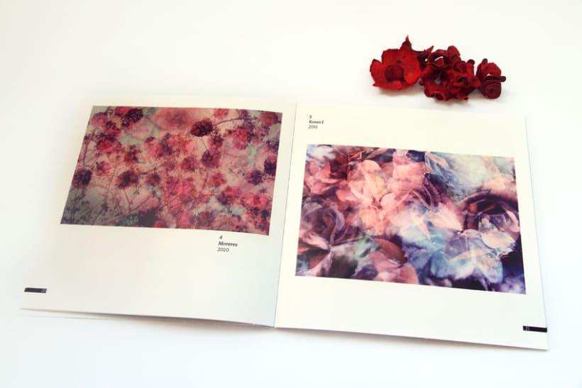 Flors  4