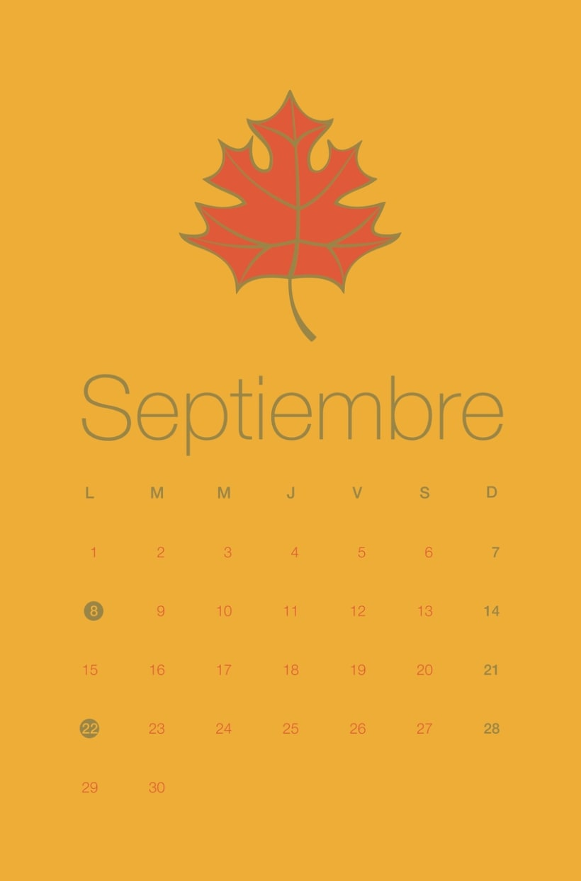Calendario VICEVA 2014  8