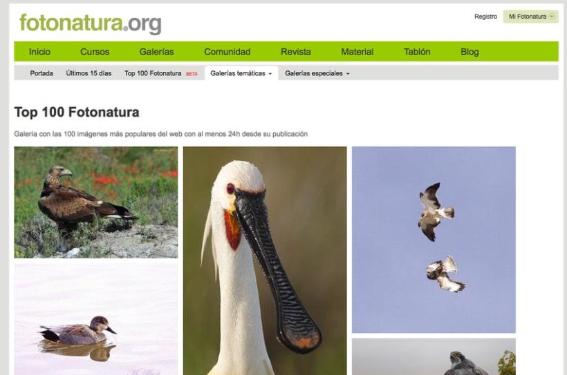 Fotonatura.org - CTO y co-founder 0
