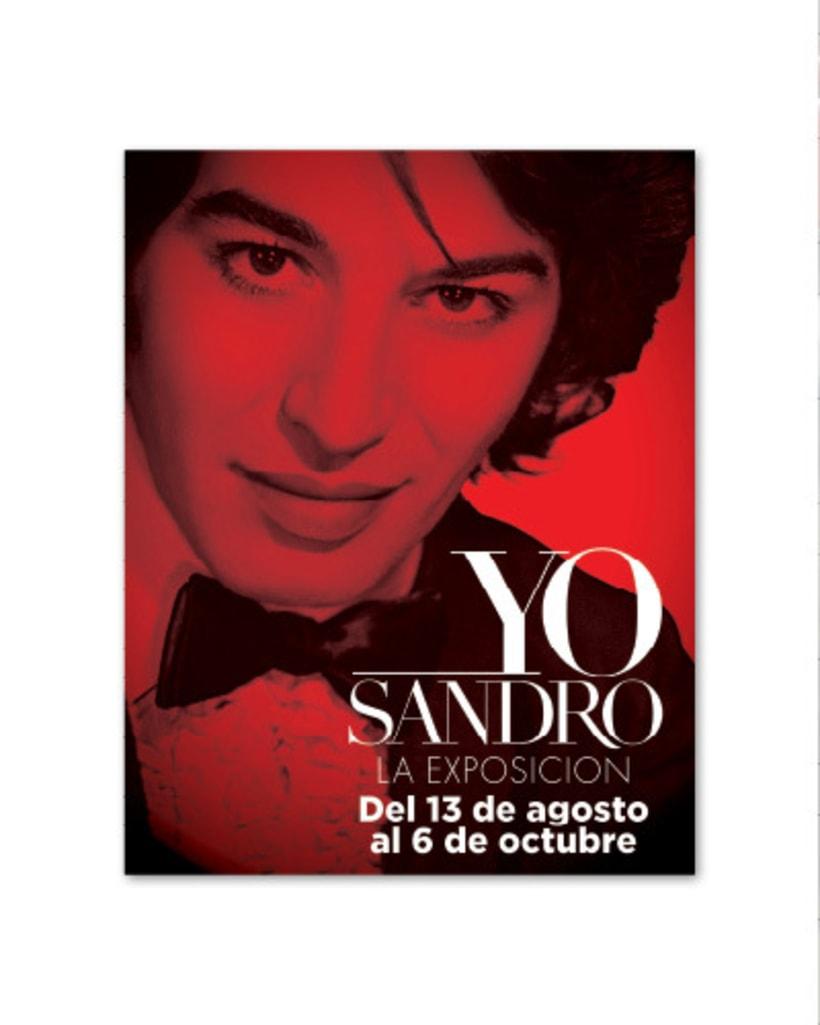 Yo Sandro :: La Exposición 12