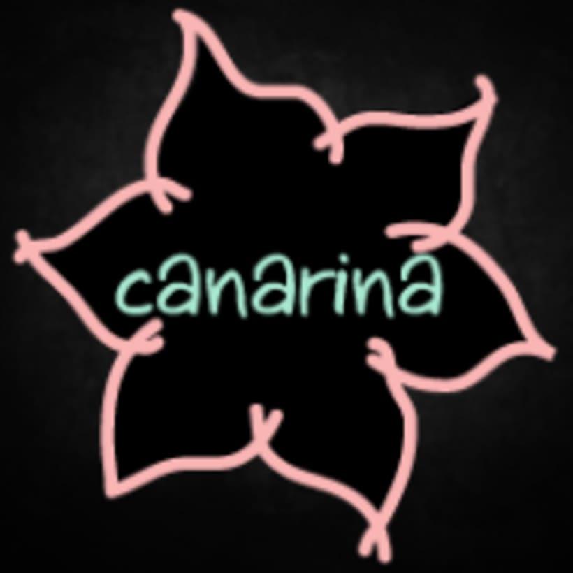 Identidad corporativa Canarina -1