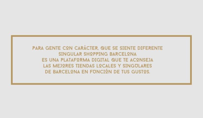 Singular Shopping Barcelona 1