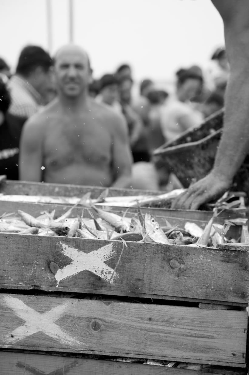 Pescadores - Espinho, Portugal 4