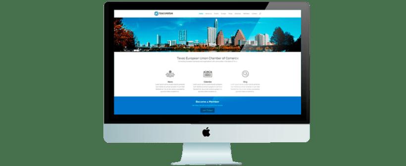 Texas European Chamber of Commerce website 0