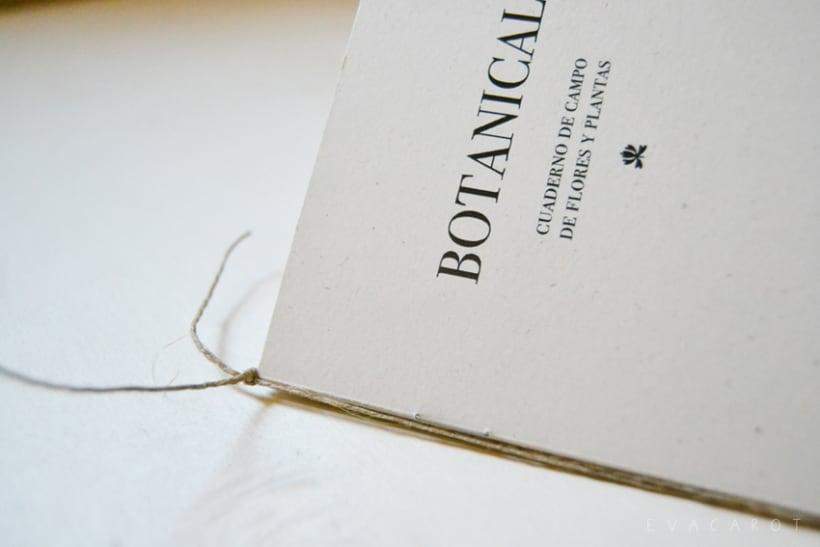 Botanical | fanzine -1