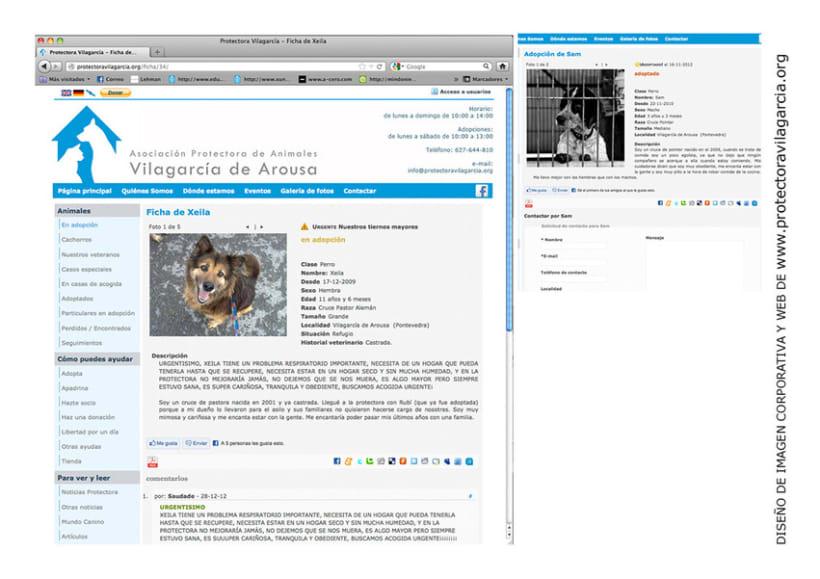 Diseño gráfico/web 6