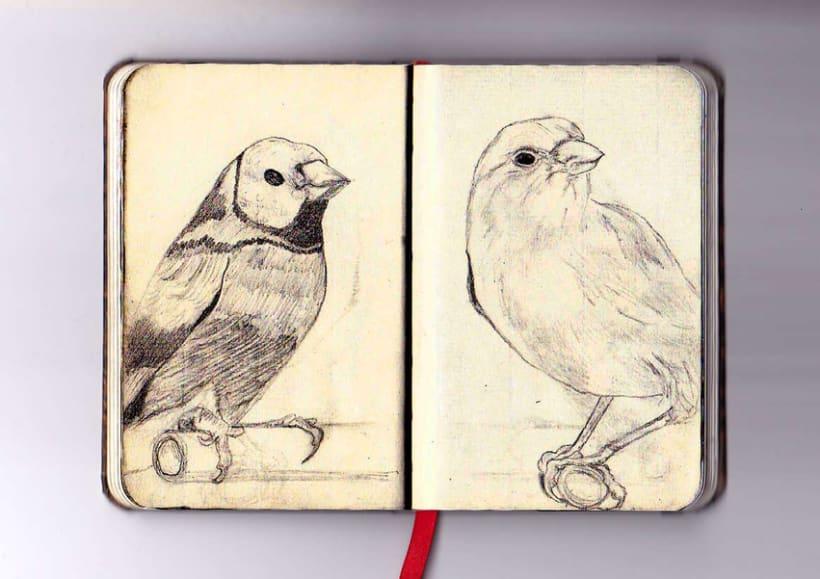 Ilustración a lápiz 7