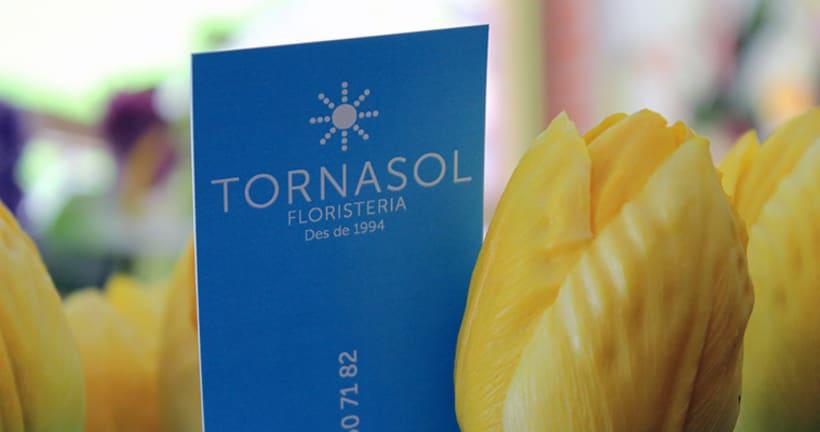 Floristería Tornasol Identidad Corporativa 0