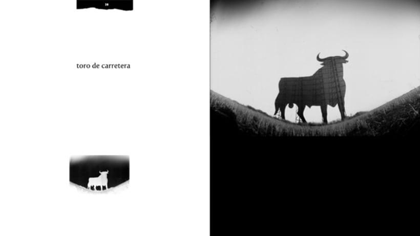 ESTENOPO libro de fotografía artesanal de Paco Casado Cepas 0