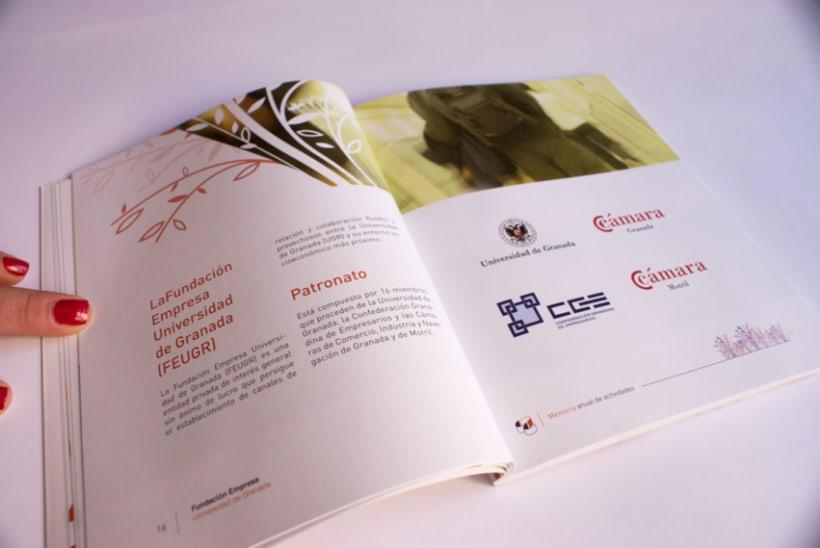 Memoria Anual de actividades Fundación Empresa Universidad de Granada (FEUGR) 4