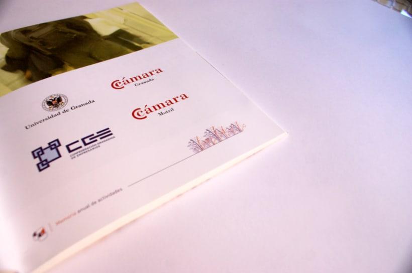 Memoria Anual de actividades Fundación Empresa Universidad de Granada (FEUGR) 7