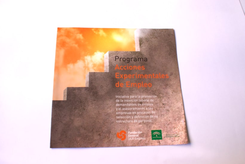 """Programa de Acciones Experimentales de Empleo """"Fundación Empresa Universidad de Granada"""" (FEUGR) 0"""
