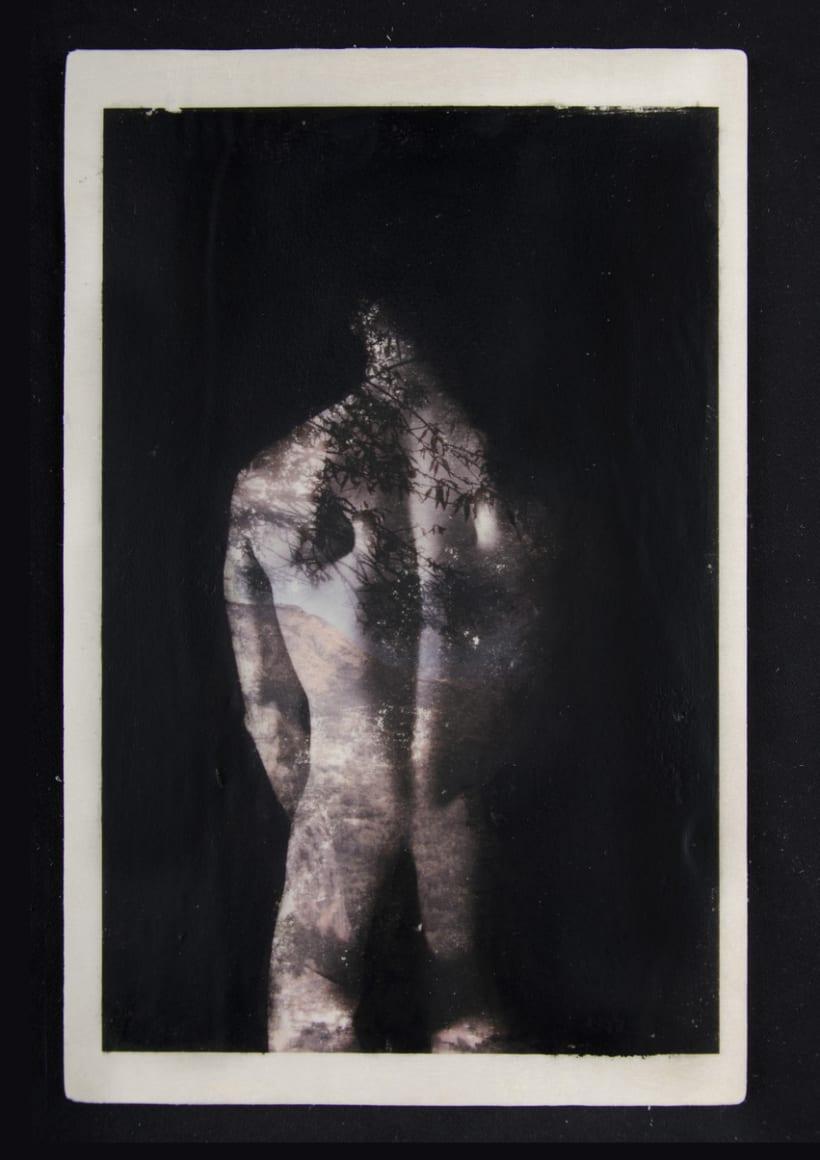 TRANSFERS VOL.I Nude/Nature 2
