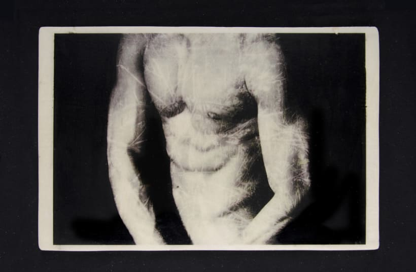 TRANSFERS VOL.I Nude/Nature 5