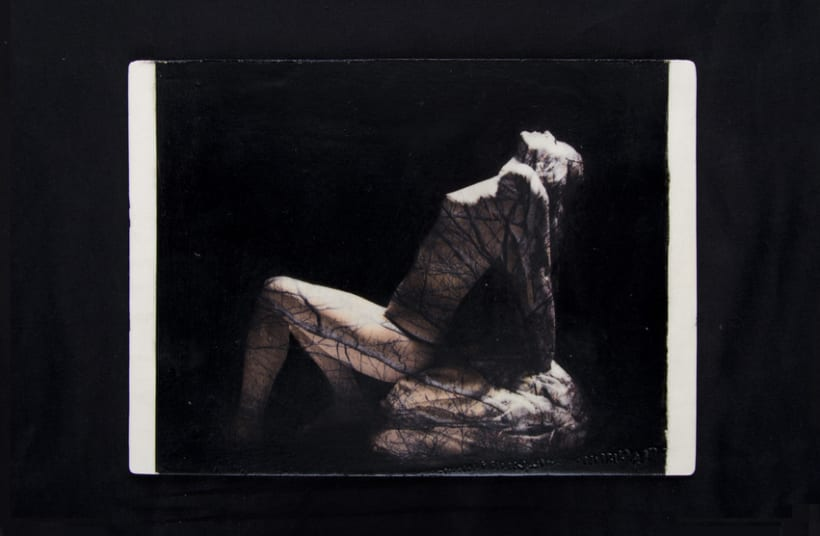 TRANSFERS VOL.I Nude/Nature 15