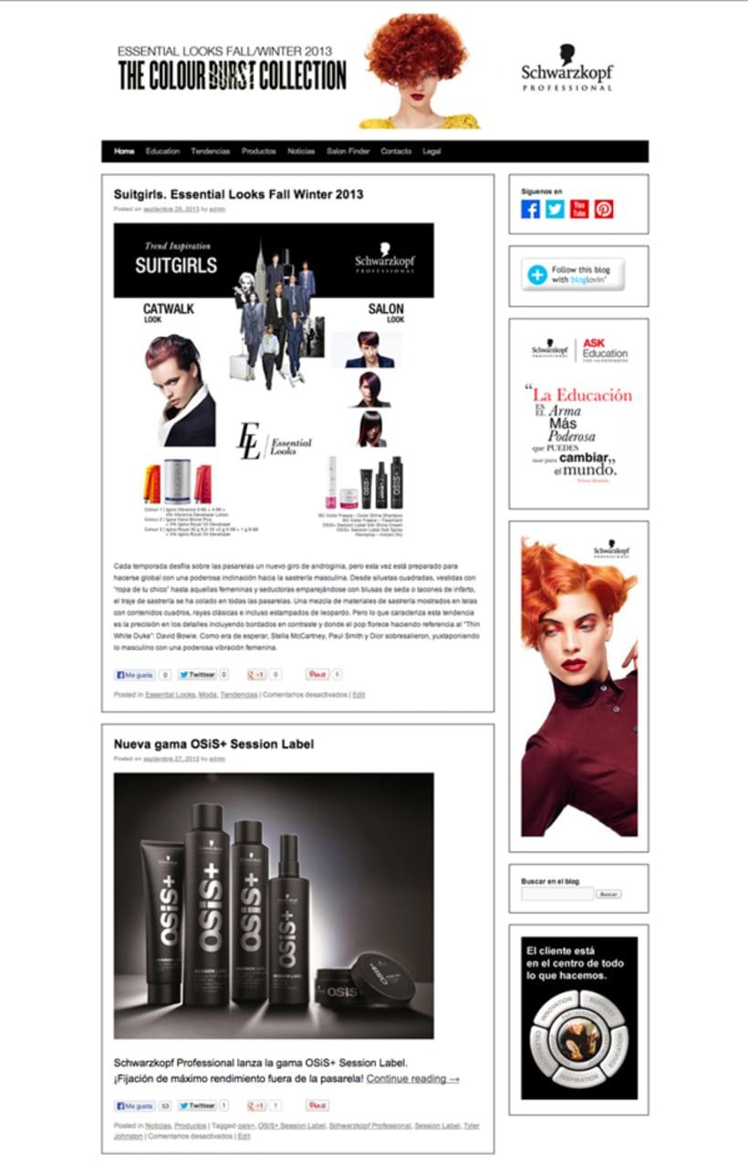 Blog Design 1