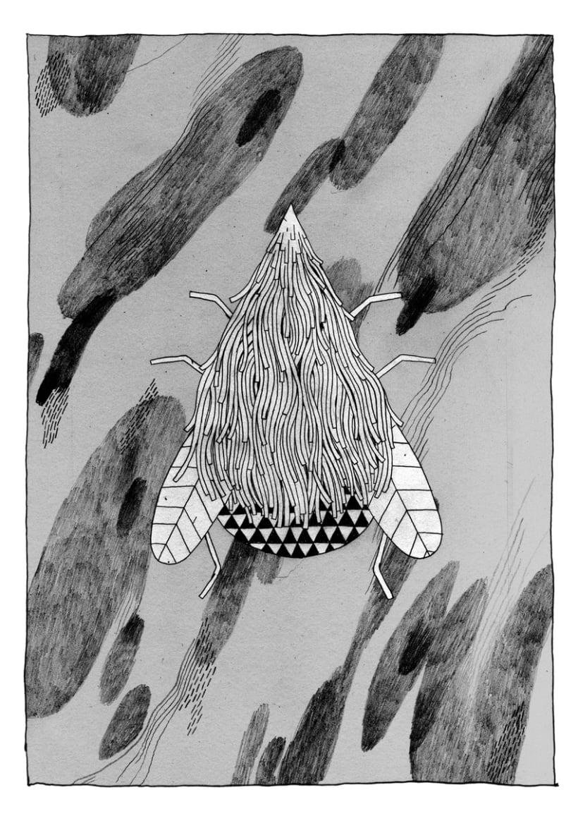 Ilustraciones (2) 1