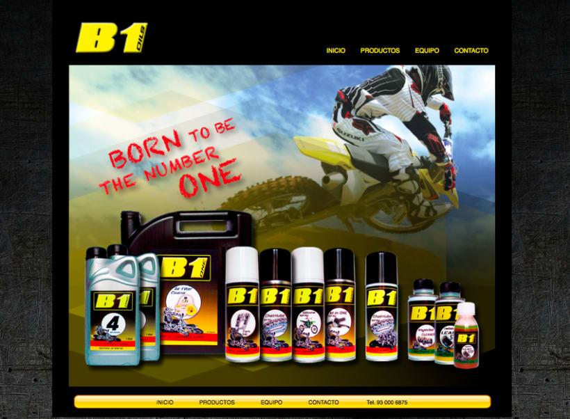 B1 Oils web 2