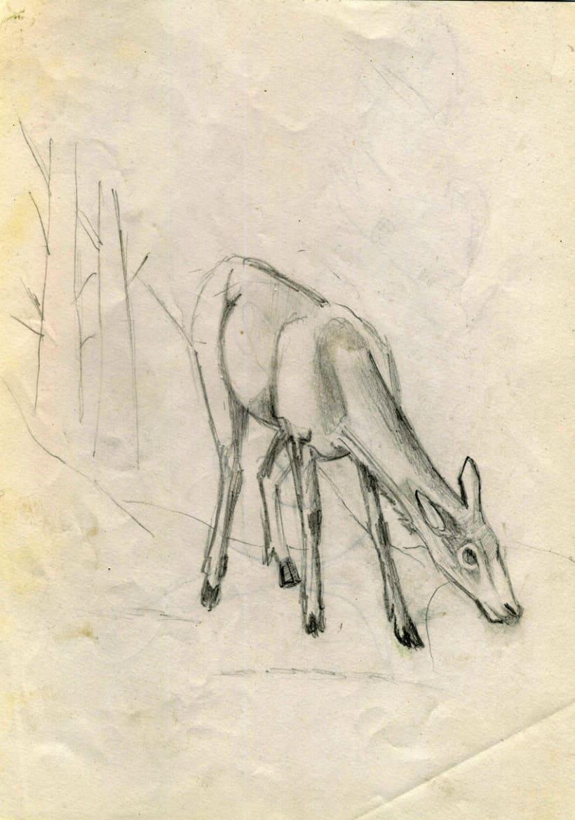 Dibujos de infancia (1998) 3