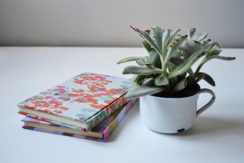 Cuadernos entelados 3