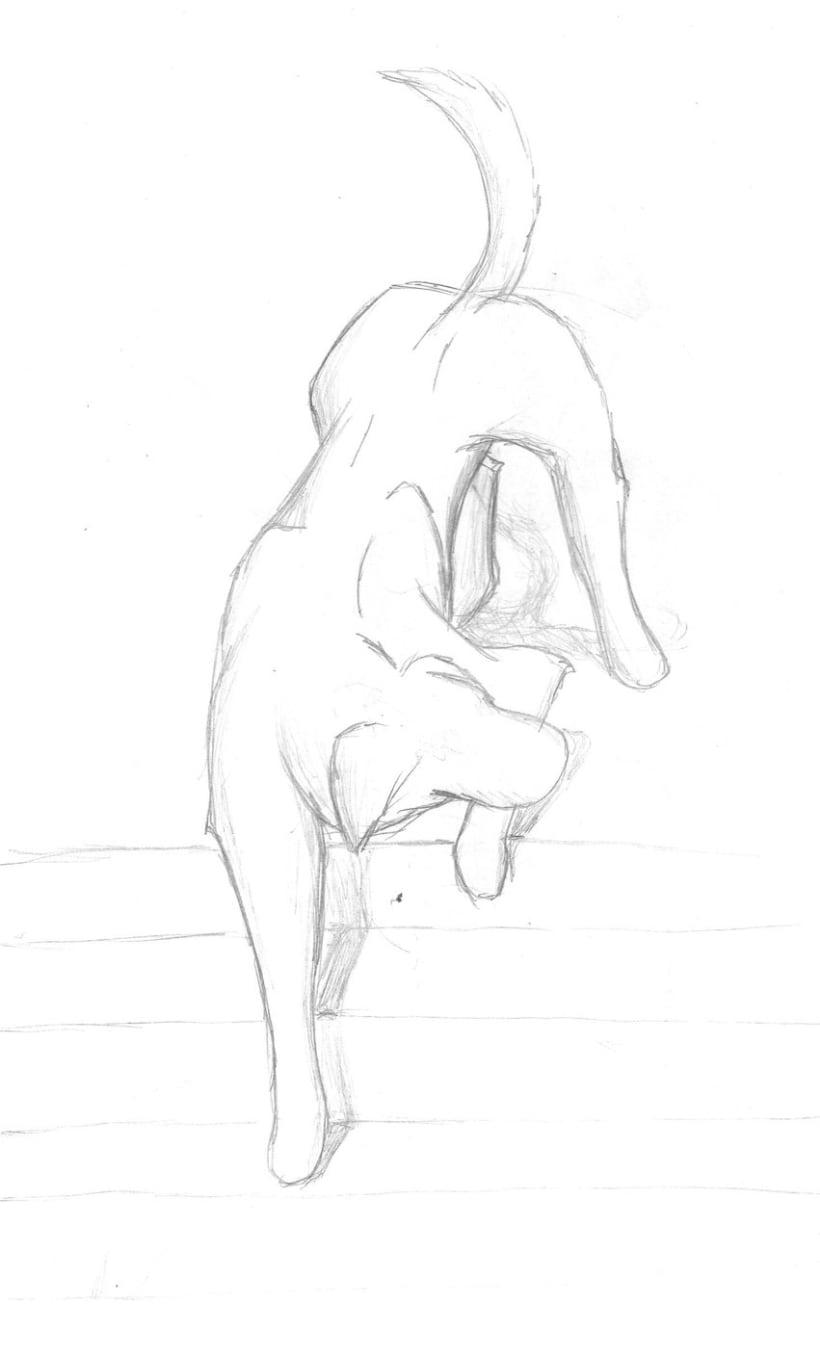Ilustraciones rápidas 6