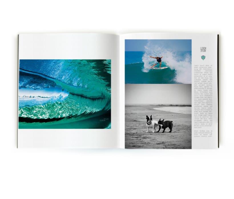 Revista de Surf 11