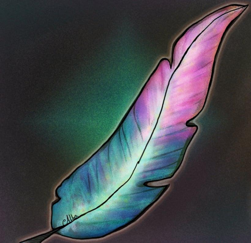 Pluma India - Indian Feather 0