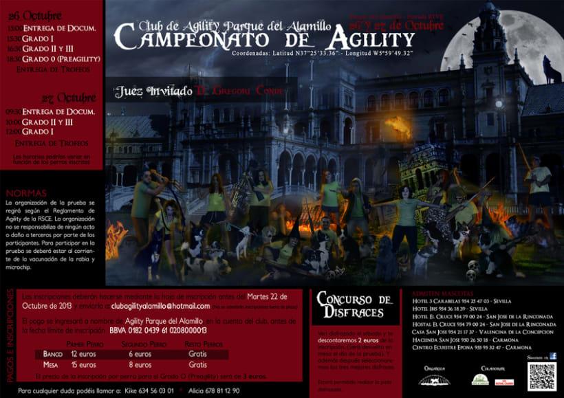 Fotomontaje para carteles Club Agility 3