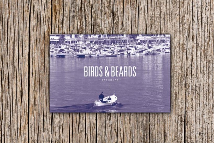 birds & beards 0