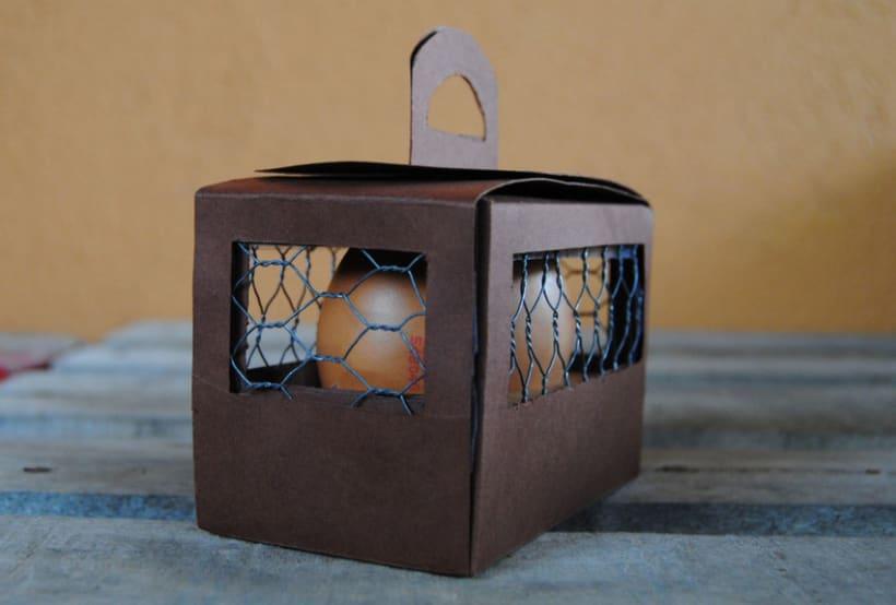 Packaging dos huevos  2