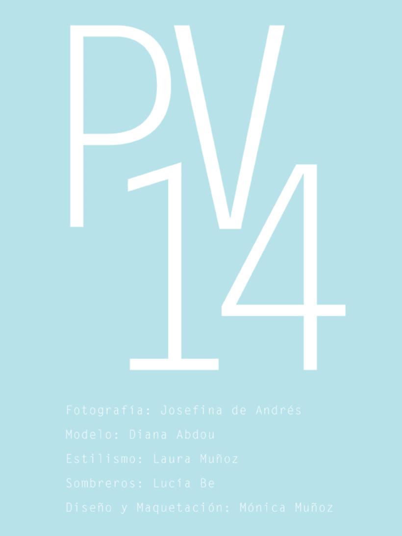 Colección P/V moniquilla- 2014 1