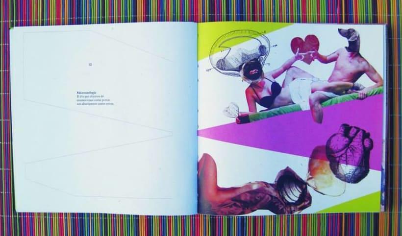 PFC.2013 - Proyecto Final de Carrera: Micropoesía&Collage 7