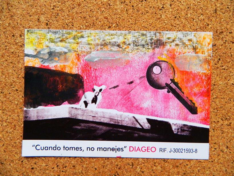Pampero PEMDLC 2013 - DIAGEO (Consumo responsable) 4
