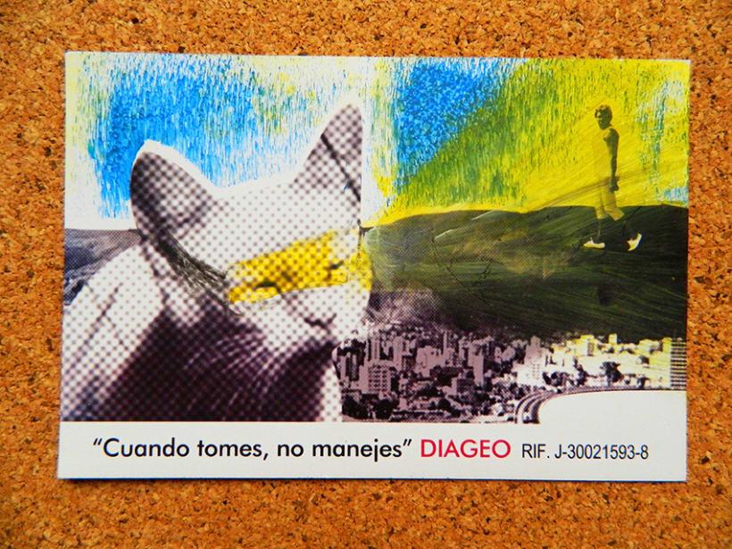 Pampero PEMDLC 2013 - DIAGEO (Consumo responsable) 7