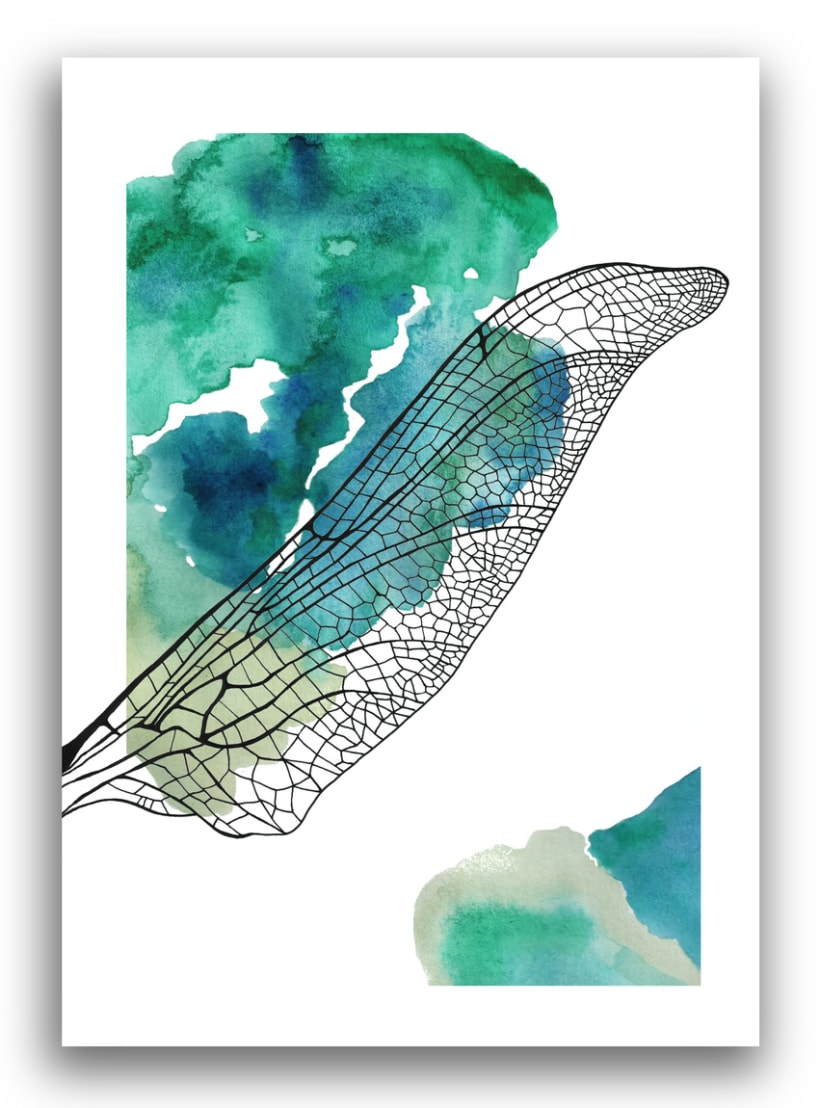 Illustrations: Watercolor with little parts of insects 8
