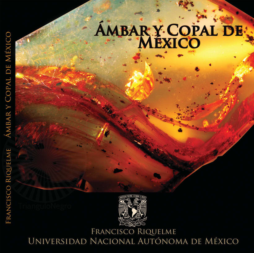 Libro Ámbar y copal de México 1