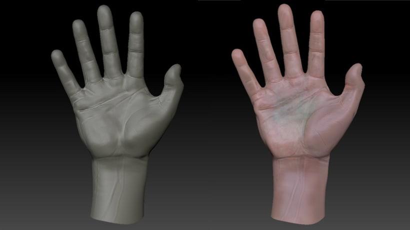 3D HAND _ Medical illustration to walking dead XD 3