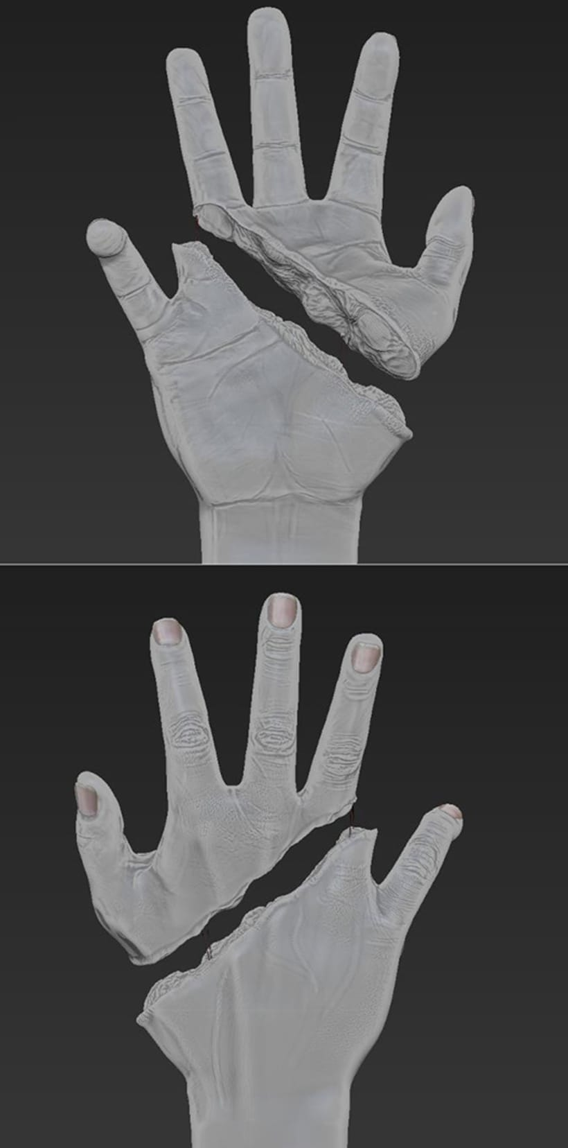 3D HAND _ Medical illustration to walking dead XD 1