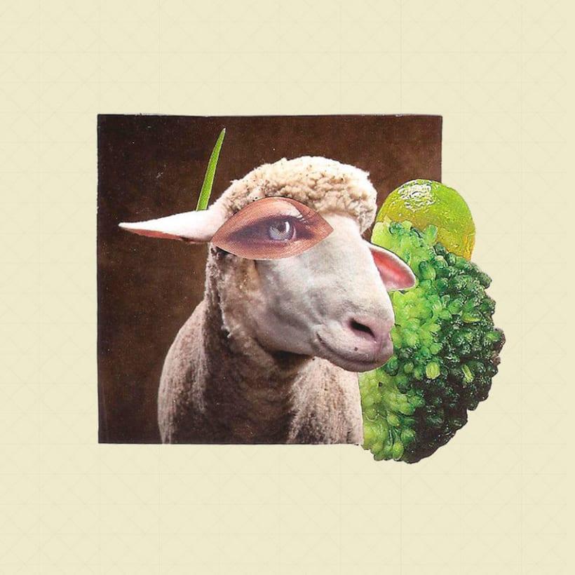 Sheep 2D 0