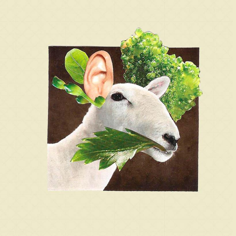 Sheep 2D 2