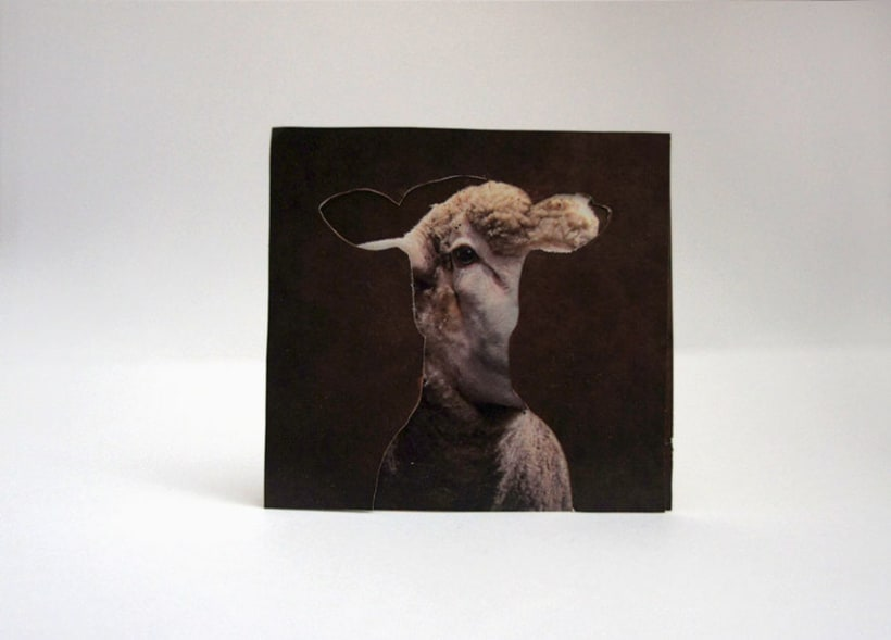 Sheep 2D 6
