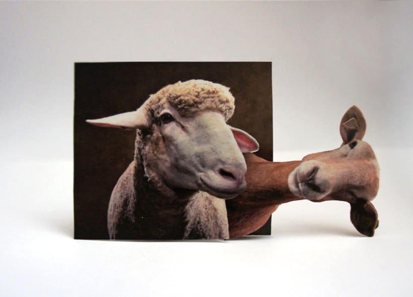 Sheep 2D 9